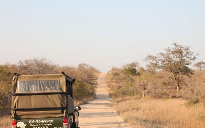 Eine geführte Safari mit Guide und Jeep