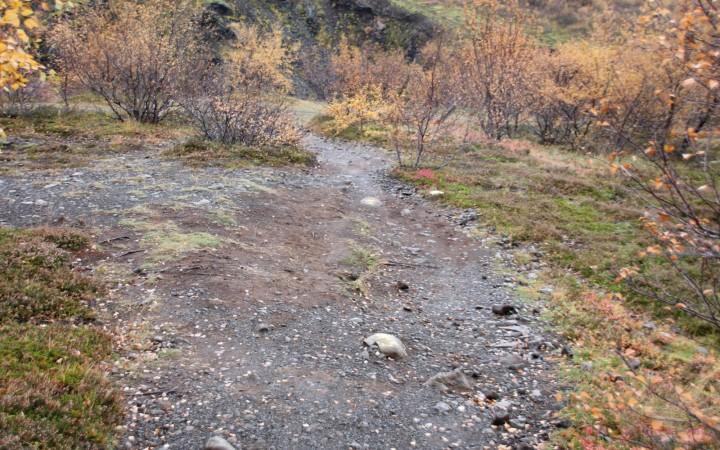 Gelbe Punkte auf den Steinen als Wegweiser