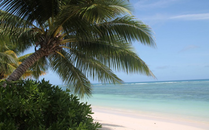 Traumhafter Strand der Anse Reunion