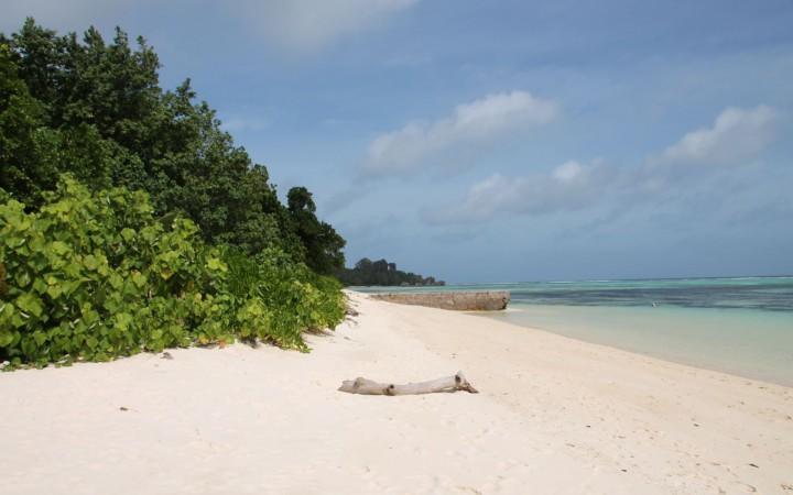 Strand in der Anse Union
