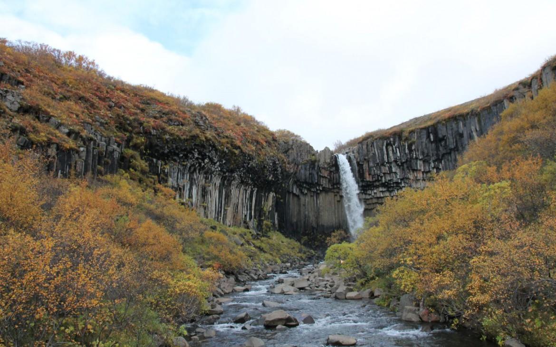 Svartifoss im Skaftafell Nationalpark